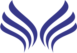 Eternity-full-logo-insignia-transparent-bg-dark
