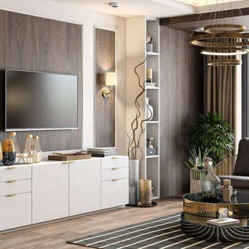eternitydesigners-blog-homeinteriors-livingroom-tvunit